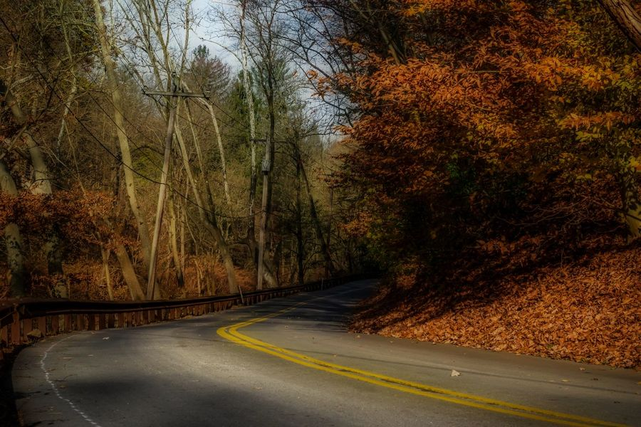 Here is a shot i took in Gladwyne, Pennsylvania showing the beautiful country road and roadside. EyeEm Best Shots EyeEm Nature Lover Nature Orton Effect Pennsylvania Asphalt Autumn Bare Tree Beauty In Nature Day Dividing Line Fantasy Howard Roberts Landscape Nature No People Outdoors Road Scenics Sky Soft Focus The Way Forward Tranquility Transportation Tree