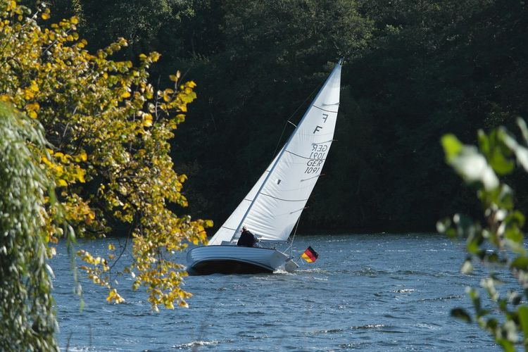 Sailboat On River Against Trees