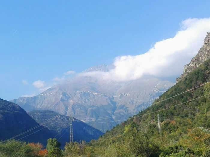 Insiemeate Insieme Tree Mountain Forest Blue Pinaceae Pine Tree Rural Scene Tea Crop Sky Mountain Range