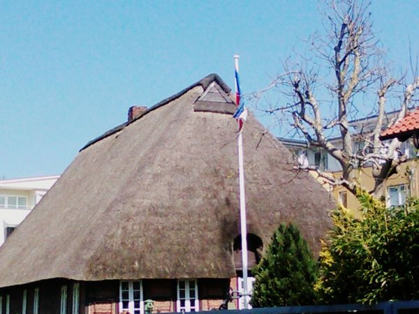 Thatched Roof Thatched House Architecture Architecture_collection ArchitecturephotographyEnjoying Life Check This Out Sun Streetphotography Day Sunny Tree
