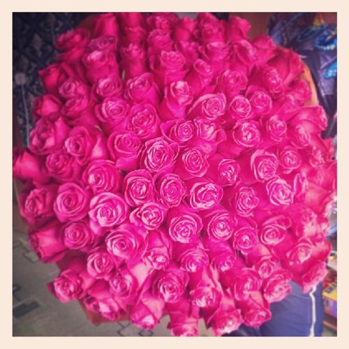 У любимой сегодня ДР - с чем её и поздравляю!  цветы  букет  розы