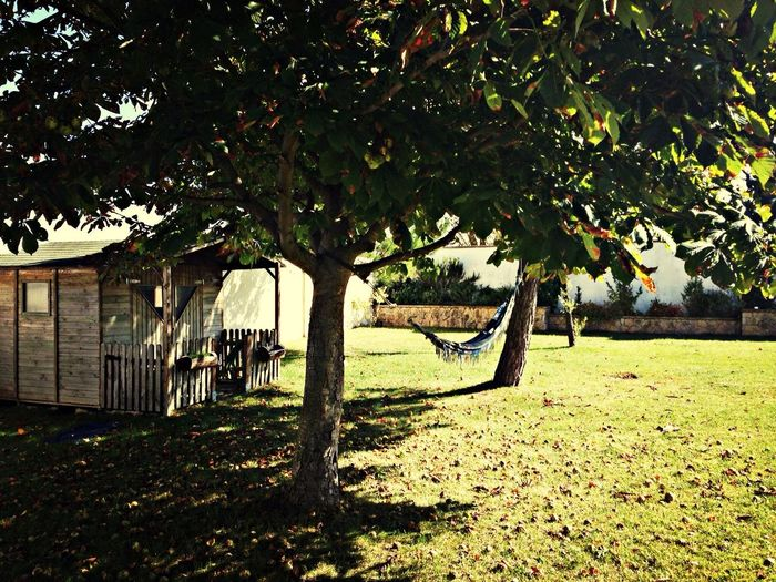 Home Sweet Home Relaxing Weekend Beautiful Day