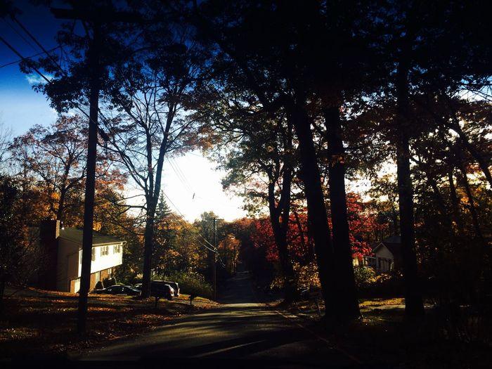 Exiting Hopatcong Check This Out Bestoftheday Picoftheday Photooftheday Pictureoftheday Fall Fall Beauty Fall Colors Taking Photos Enjoying Life