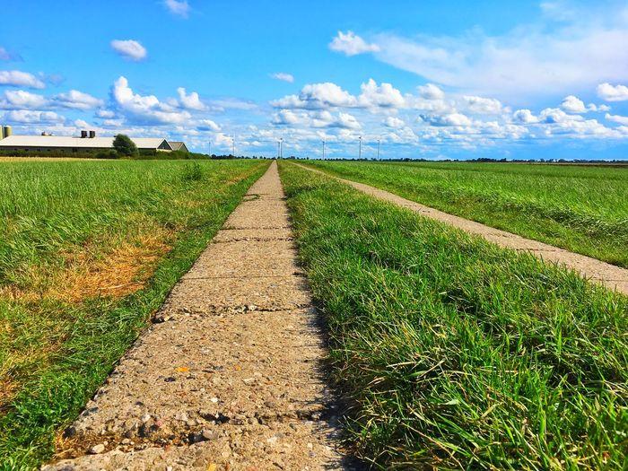 Path Way Sky