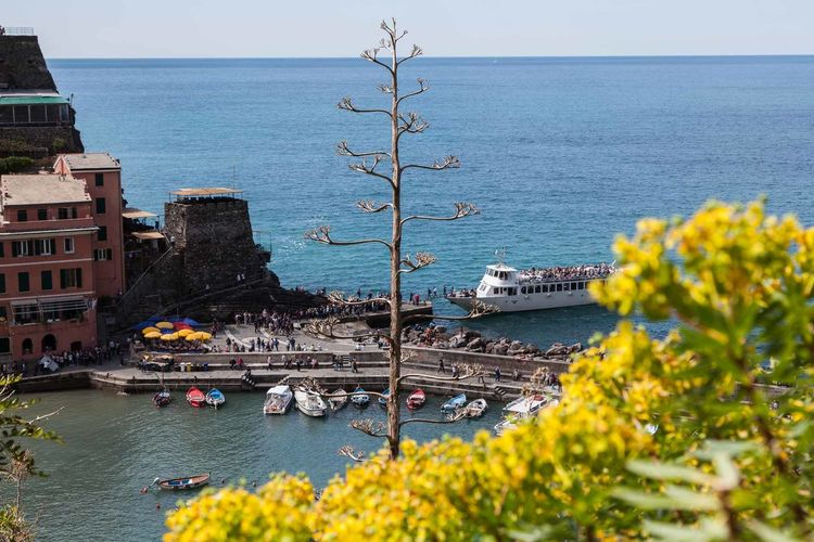 5 Terre Architecture Beauty In Nature Boat Clear Sky Day High Angle View Horizon Over Water Liguria Mediterranean  Mode Of Transport Nature Nautical Vessel No People Outdoors Scenics Sea Sky Tourism Transportation Travel Destinations Tree Water