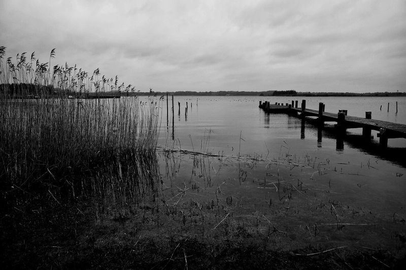 Schlei The Week On EyeEm Lake Reflection Grass No People Outdoors Day EyeEm Ready