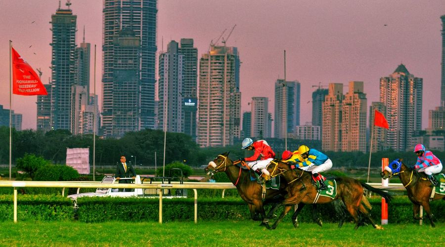 A part time job.. being a jockey Racing Horse Horse Photography  Horses Jockey Race Horse Race Mumbai Racecourse