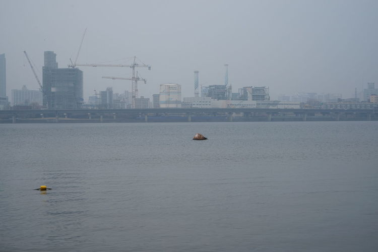 Air Pollution Cityscape Han River Animal Themes Animals In The Wild Architecture Building Exterior Built Structure City Day Gloomy Day Gray Nature Nautical Vessel No People Outdoors Sea Sky Smog Water Waterfront