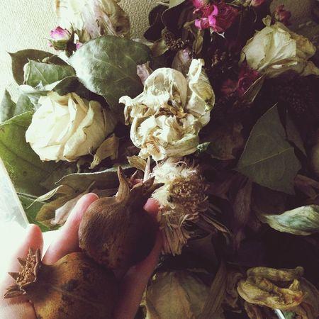 Enjoying Life Still Life Pomegranate Flowers Immortal Bouquet Composition