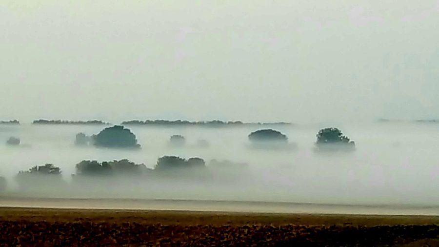 Fog In The Morning Nature Outdoors Beauty In Nature