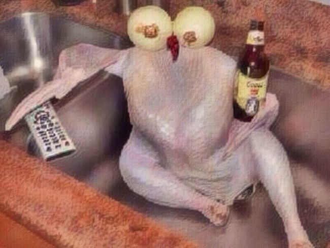 """Directions say, let the bird chill in the sink for a few hours... How we doin'?"" Don't ordinarily do this but saw this on FB and couldn't resist ;p Happy Turkey!! Happy Thanksgiving!! Chillin"