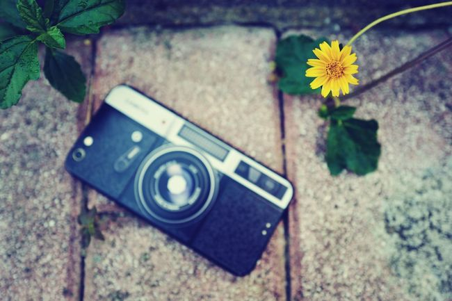LEICA Q Taking Photos Leicacamera On The Road Photography Hi! Eye4photography  EyeEm Best Shots