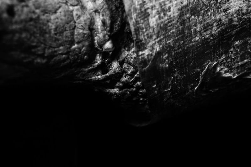 skull abstraction 04 darkness and light Skull Bone  Macro Photography Black And White Black And White Photography Texture Full Frame Nature
