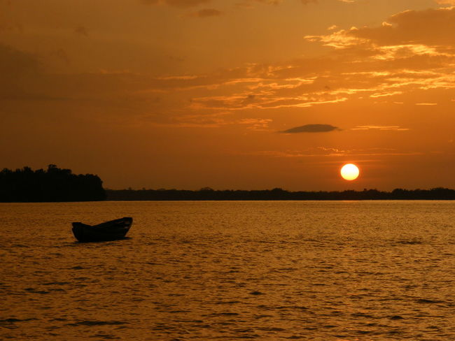 African Sunset Boat Fishing Bissau Guinea Africa African Beauty African Safari African Fisherman Bolama Sea And Sky Africa Day To Day Life Sunset Orange Color Sun Outdoors Silhouette Nature Sea Gold Colored Landscape Sky Water Beauty Beauty In Nature