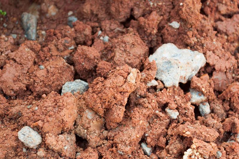 mud and stone