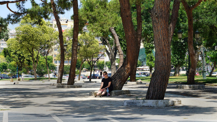 Tree Growth Day One Person Tree Trunk Outdoors Full Length Nature One Man Only Men Real People Only Men People Adult Beauty In Nature Adults Only Young Adult ARISTOTELOUS SQUARE THESSALONIKH Aristotelous Square Salonika Park Square Greece Thessaloniki Nature