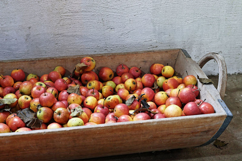 Healthy Eating Food And Drink Food Fruit Freshness Wellbeing Wood - Material Large Group Of Objects Box Abundance Container No People Vegetable Apple - Fruit Crate Red Day Still Life Box - Container High Angle View Ripe Apfelernte Obstlager Bio
