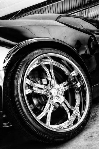 Tire Land