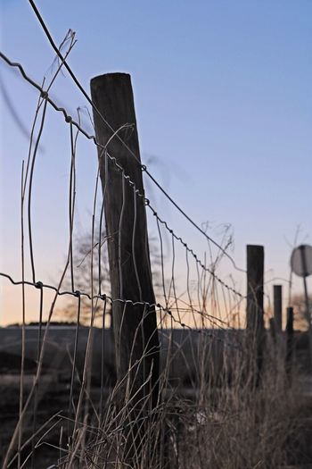 Untitled Clear Sky No People Outdoors Barbed Wire Day Field Sky Close-up Landscape Nature