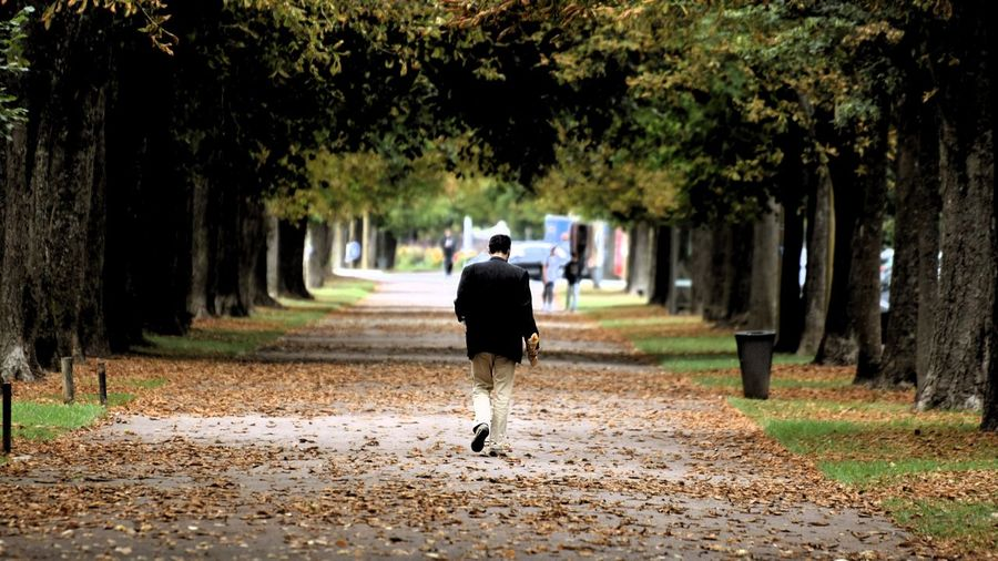 Rear view of man walking on road during autumn