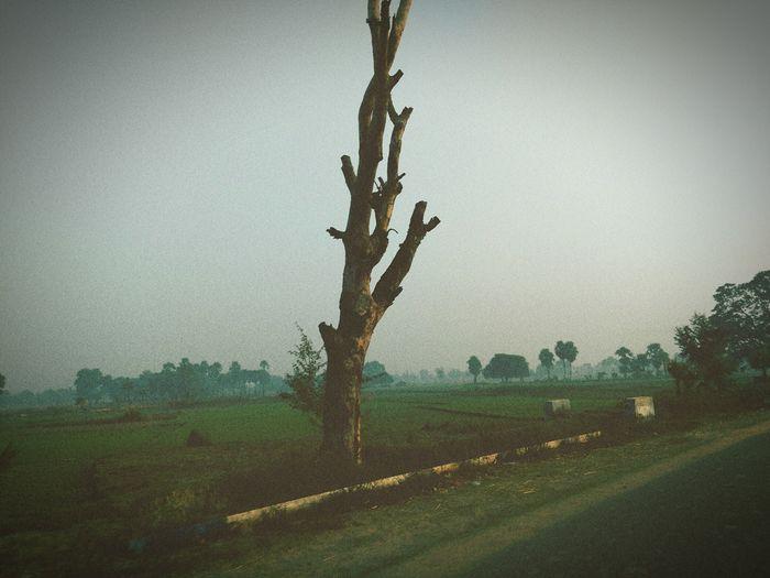 Photographic Memory First_trip_after_university_ Bihar Spritual Journey _rajgir