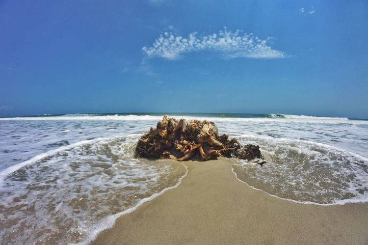 Inanimate objects are sometimes the most beautiful. Beachphotography Nikon Serenity Wanderlust Explore Wideangle EyeEm Best Shots EyeEm Nature Lover Summer16 Vacation Vibes Nature_collection Melbournebeach Florida Beach Enjoying Life Relaxing
