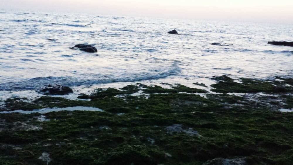 Sea Nature Beach Water Tranquility Sunset Outdoors Beauty In Nature Tranquil Scene Scenics Horizon Over Water Sky Day Wave Rome Roma Rome, Italy Front View Picoftheday First Eyeem Photo Photooftheday Looking At Camera Cityscape Details Spettacular View