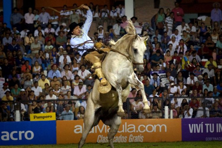 Rider on a horse jineteando the festival of dressage and folklore of Jesus Maria, Argentine the November January 2014 The Photojournalist - 2015 EyeEm Awards