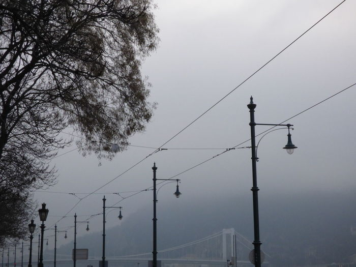 Low angle view of street lights in foggy weather