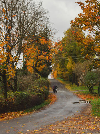 autumn in the country Autumn Autumn Colors Cloudy Light Autumn Beauty In Nature Change Day Full Length Growth Leaf Nature Outdoors Real People Road Scenics Sky The Way Forward Transportation Tree