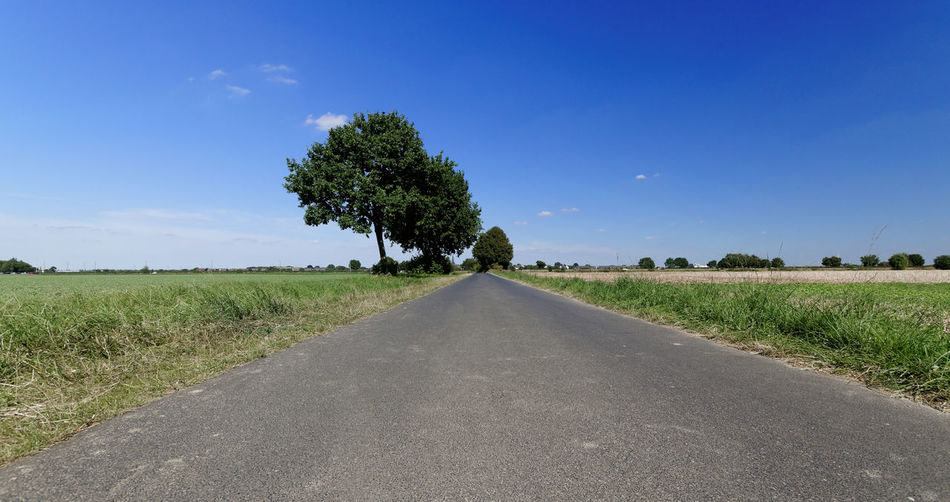 Blue Country Road Countryside Diminishing Perspective Empty Road Grass Landscape Long Non-urban Scene Road Rural Scene Sky The Way Forward Tranquil Scene Tranquility Tree Vanishing Point