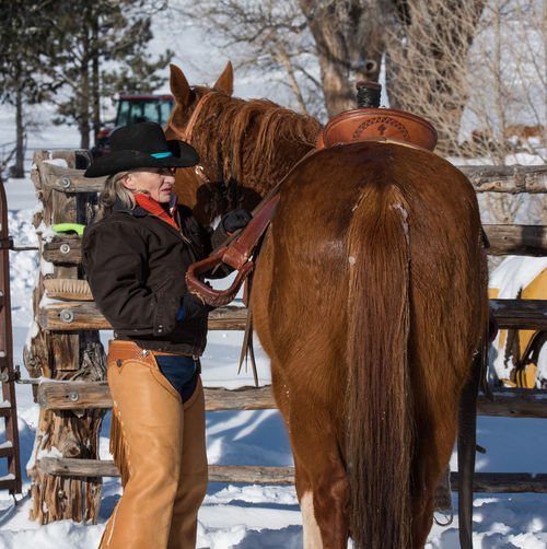 Feb 2019 - Music Meadows Ranch Horse Theme Mammal Livestock Winter Horse Real People One Animal Vertebrate Day Warm Clothing Cowboy Herbivorous Cold Temperature Cowgirl Standing Snow Winter Cowgirl Up Chaps Western Style Saddle Paddock Fence