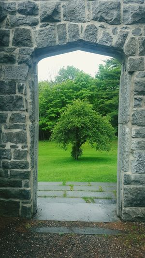 View through the doorway Built Structure Architecture Green Color Nature Outdoors Ruins Ruins Architecture Ruins Snapshot Ruins Of The Past Mackenzie King Estate EyeEmNewHere No People Architecture Day