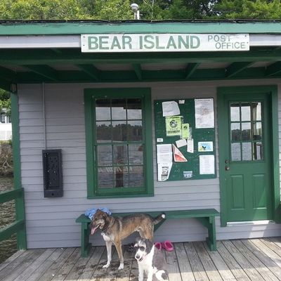 Quick break from our Island TrailRun  to drop off mail at the Bearisland mail dock Islandlife lakelife lakewinni lakedogs rei1440project