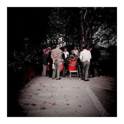 南园滨江绿地 Vignette Art Red Color Vignette 上海.中国 CityLifeStyle Shanghai, China Play Leaf Leaves 秋色 Red Sun Sky Sky And Clouds