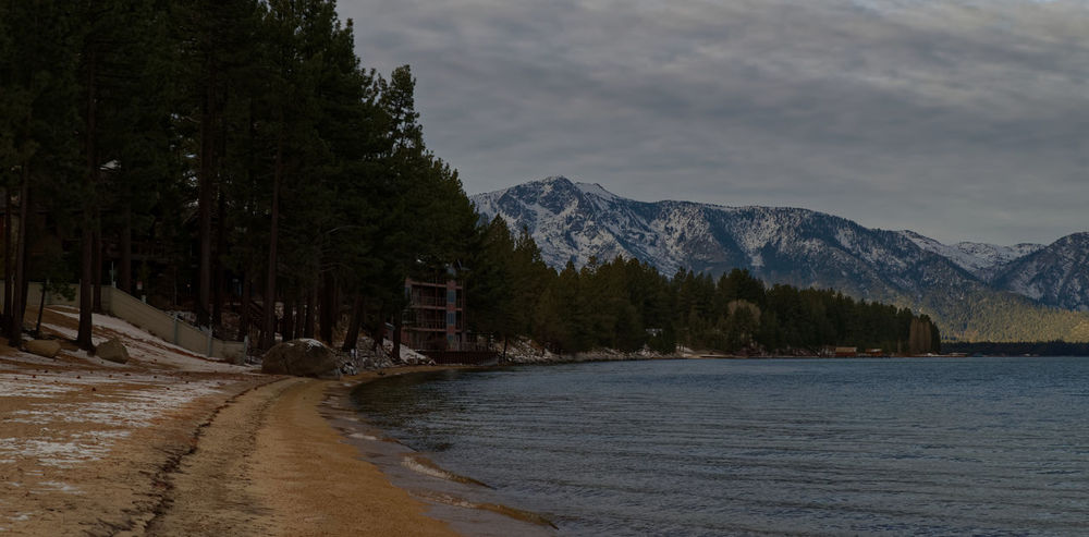 Tahoe Lakeshore. Leading Lines Trees Pentax PENTAX K-1 California USA Pentax 24-70 F/2.8 Lake Cold Winter Cloud Sand Morning Tahoe Mountain Nature Water Scenics Beauty In Nature Outdoors Tranquil Scene Mountain Range Tranquility Tree No People Waterfront Travel Destinations Snow Sky Winter California Dreamin