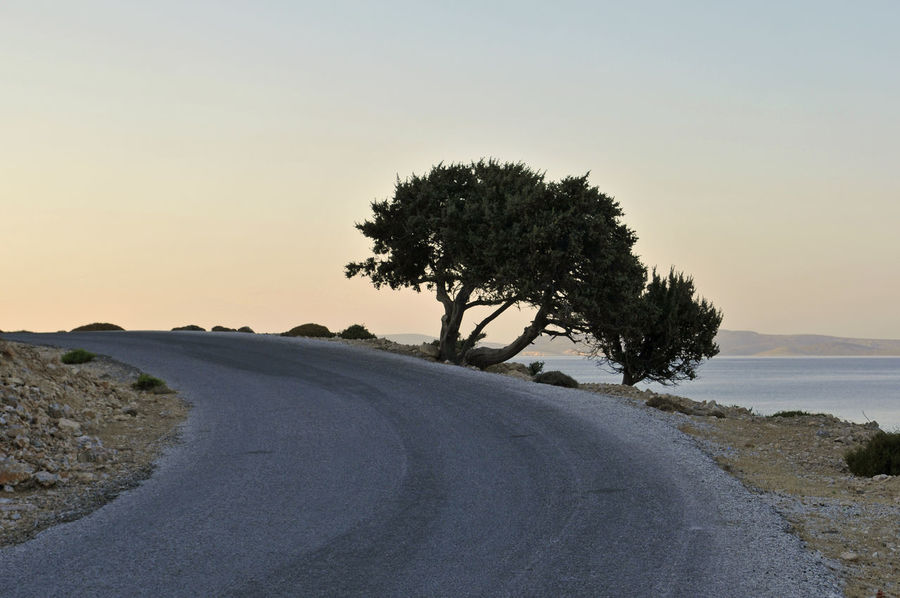 road bent with tree in Lipsi Island, Greece Asphalt Bent Coastal Country Road Dangerous Dusk Europe Evening Greece Growth Island Landscape Lipsi Mediterranean  No People Outdoors Remote Road Scenics Tranquil Scene Travel Destinations Tree Twilight Winding