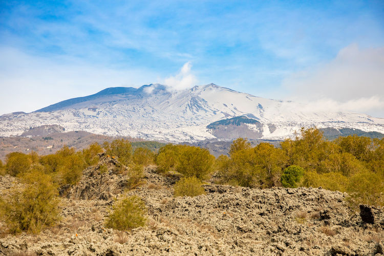 Etna Volcano Sicilia Italy Sicily Winter Snow Mountain Scenics - Nature Sky Beauty In Nature Environment Landscape Tranquil Scene Cloud - Sky Nature Tranquility Mountain Range Non-urban Scene Cold Temperature No People Plant Day Snowcapped Mountain Mountain Peak Outdoors