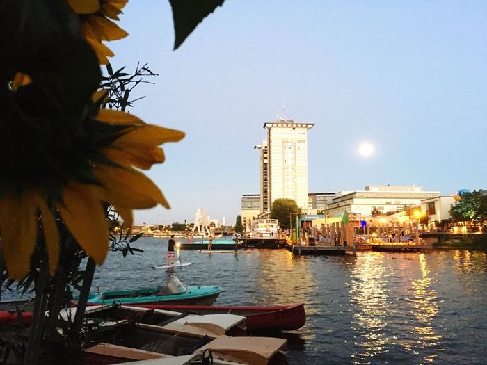 Evening Moon Badeschiff Sup Stand-up Paddle Boarding Stand-Up Board Water Spree River Spree Wet Activity Sports Romantic People Vibrant Sunflower Summer Night Kanu Kajak Pool Nightswimming