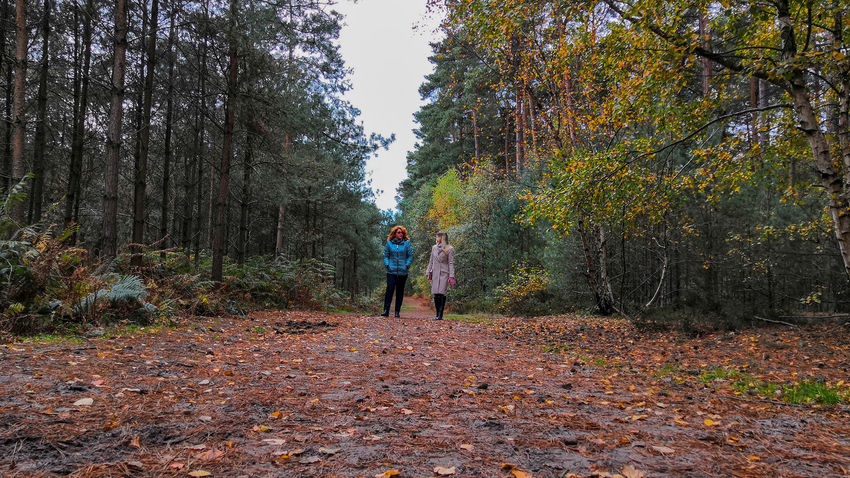 countryside walk Walking Honor 10 United Kingdom Walk Two People Ladies Women Tree Autumn Child Standing Leaf Childhood Sky Fall Fallen Change Footwear Low Section Leaves Falling Season  Autumn Collection Park - Man Made Space