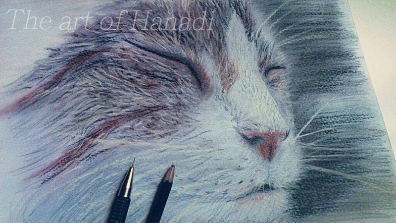 Cat by Hanadiart Cat Art My Draw ♥