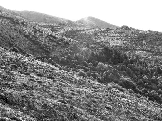 climbing monte linas with family Beauty In Nature Black And White Clear Sky Countryside Day Geology High Up Horizon Over Land Landscape Majestic Mountain Mountain Range Nature No People Non Urban Scene Non-urban Scene Outdoors Physical Geography Remote Rocky Scenics Sky Solitude Tranquil Scene Tranquility