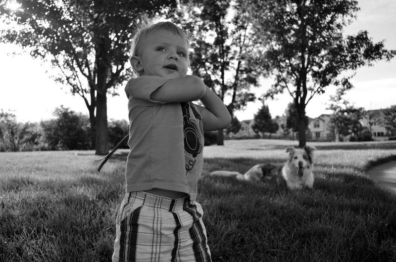 Boy holding stick in park