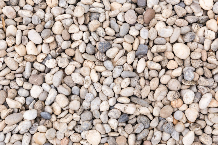 Stone pebbles texture or stone pebbles background for interior exterior decoration and industrial construction design. Stone pebbles motifs that occurs natural. Stone Pebbles Sand Background Texture Slate Table Grey Abstract Surface Rock Granite Marble Wall Floor Tile Board Nature Old Closeup Bright Retro Material Rough Mineral Cave Light Wallpaper Architecture Home Construction Brick Modern Castle Backdrop House Urban Structure Grunge Detail Antique Pavement Cobblestone Conservatory Road Street Paving Perspective Garden Abundance Food And Drink Full Frame Large Group Of Objects Backgrounds Food No People Healthy Eating Wellbeing Freshness High Angle View Outdoors Directly Above Day Textured  Still Life White Color Organic Market Pebble Vegetarian Food