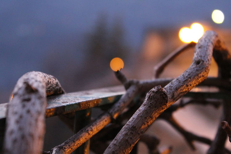 Balcony View Canadian Vine Chain Close-up Cold Temperature Fence Focus On Foreground Metal Metallic Nature Wins No People Old Outdoors Protection Rusty Safety Season  Security Selective Focus Snow Sunlight Vine Winter Wood - Material Showcase April