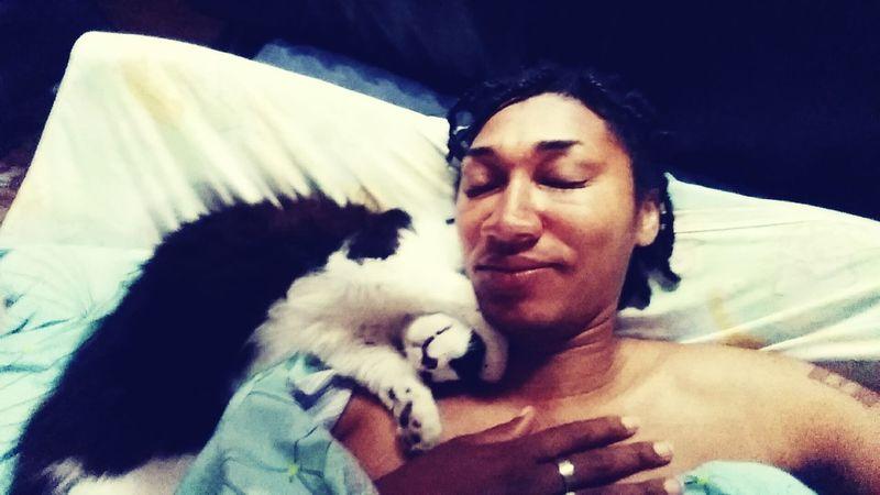 Kitten Cuddling Cats Of EyeEm Cute Pets Cute Cats