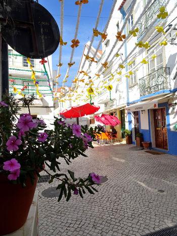 Alcacer Do Sal Alentejo Portugal Rio River Rua Sado Santos Populares Street Village