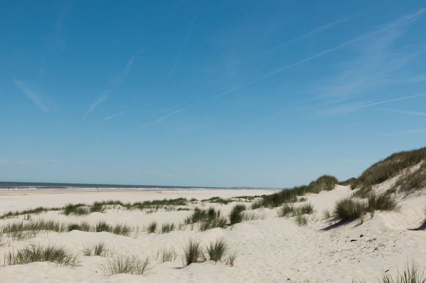 Sand beach. Beach Beachphotography Beauty In Nature Blue Day Dune Environment Grass Idyllic Land Landscape Marram Grass Nature No People Non-urban Scene Outdoors Plant Sand Sand Dune Scenics - Nature Sky Tranquil Scene Tranquility Water