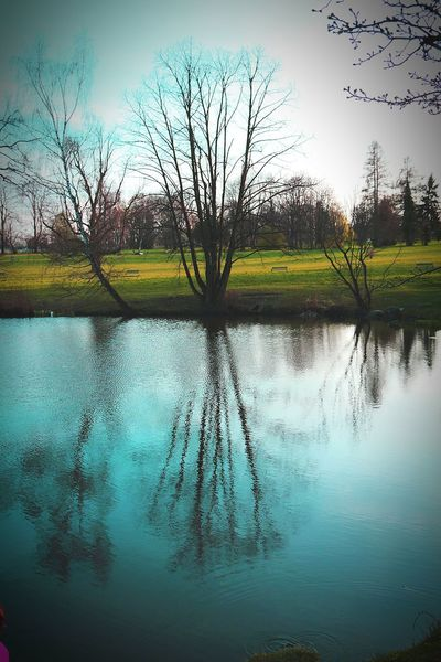 Taking Photos Polska łańcut Nature Photography EyeEm Nature Lover Water Reflections Nature_collection Watershots Spring Into Spring Canon700D