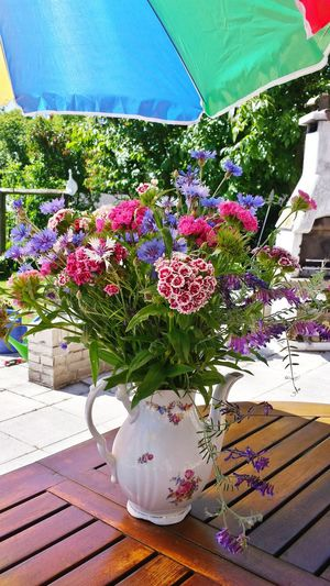 In the Summertime..... Summerflowers Flowers , EyeEm Nature Lover , Summer Views Sommerblumen Flower Vase Flowers In Vases Flowers In A Vase